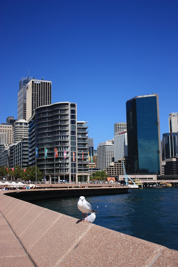 Vitesse de clignotement rencontre Brisbane